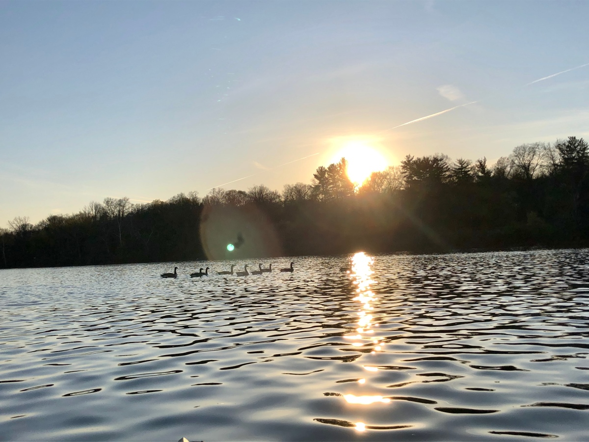 DelVal Outdoors News Roundup, April 8, 2020