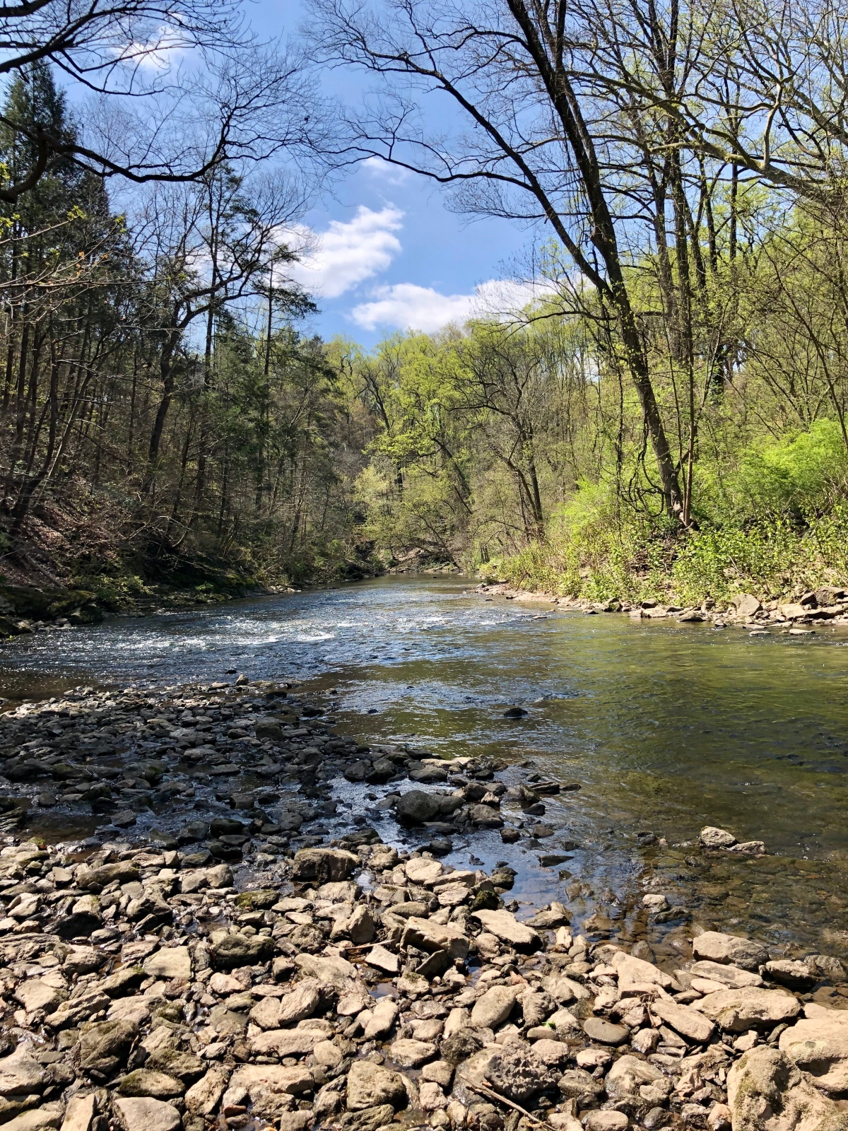 15 WITHIN 15: Fishing the Wissahickon